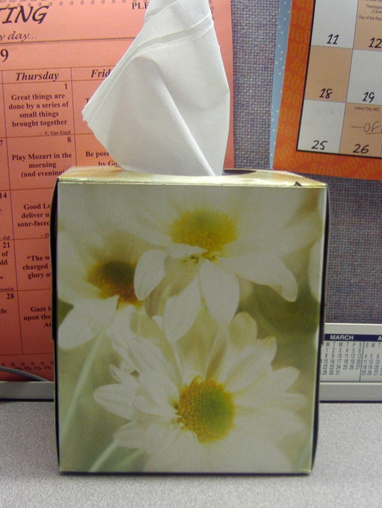 ... when it is a tissue box. Then, when is a tissue box not a tissue box?
